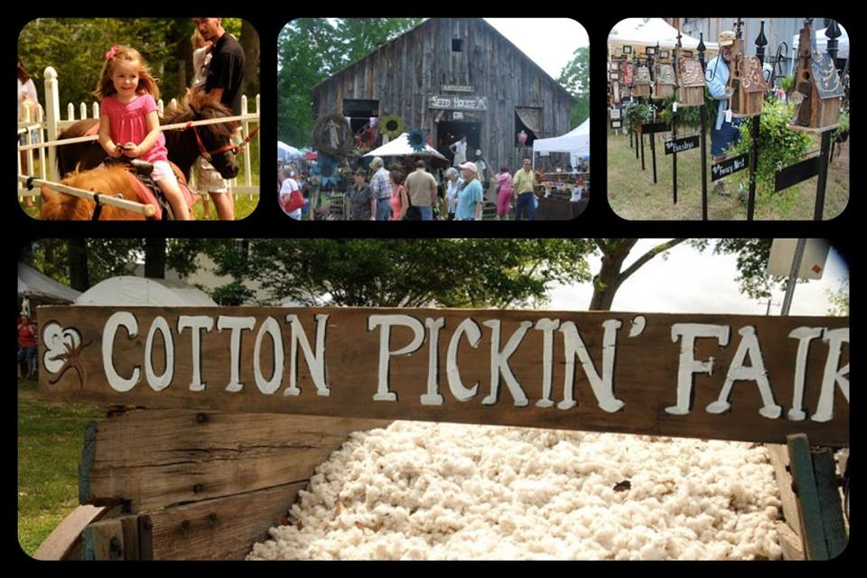 Image result for cotton pickin fair
