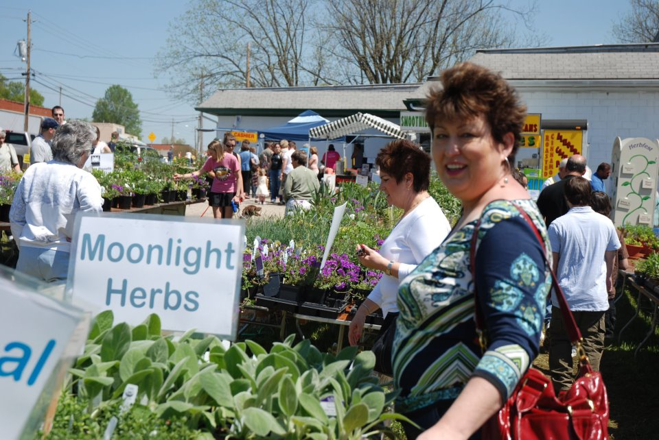 The Wake Forest HerbFest